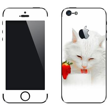 Виниловая наклейка «Белая кошка пьет молоко» на телефон Apple iPhone 5