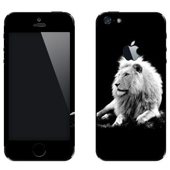 Виниловая наклейка «Белый лев» на телефон Apple iPhone 5