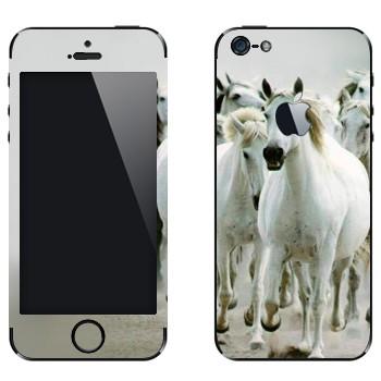 Виниловая наклейка «Белые лошади» на телефон Apple iPhone 5