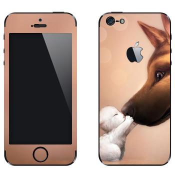 Виниловая наклейка «Белый котенок и овчарка» на телефон Apple iPhone 5