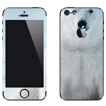 Виниловая наклейка «Белый медведь» на телефон Apple iPhone 5