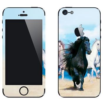 Виниловая наклейка «Черная и белые лошади» на телефон Apple iPhone 5