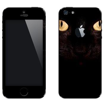Виниловая наклейка «Черная кошка» на телефон Apple iPhone 5
