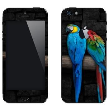 Виниловая наклейка «Два попугая Ара» на телефон Apple iPhone 5