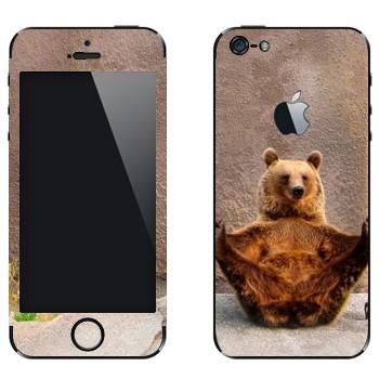Виниловая наклейка «Гризли в зоопарке» на телефон Apple iPhone 5