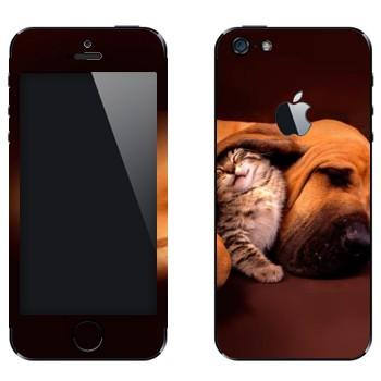 Виниловая наклейка «Котенок и собака» на телефон Apple iPhone 5