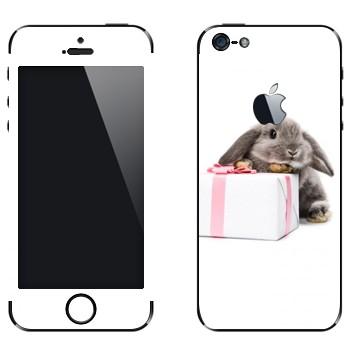Виниловая наклейка «Кролик с подарком» на телефон Apple iPhone 5