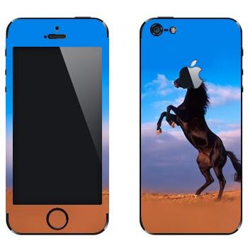 Виниловая наклейка «Лошадь на дыбах» на телефон Apple iPhone 5