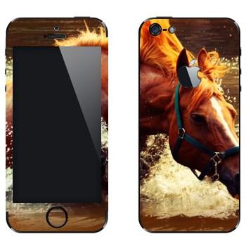 Виниловая наклейка «Лошадь в реке» на телефон Apple iPhone 5