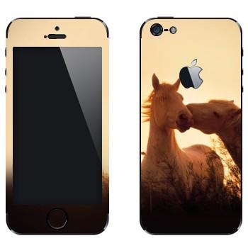 Виниловая наклейка «Лошади целуются» на телефон Apple iPhone 5