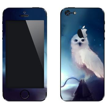 Виниловая наклейка «Полярная сова ночью» на телефон Apple iPhone 5