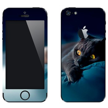 Виниловая наклейка «Серая кошка» на телефон Apple iPhone 5