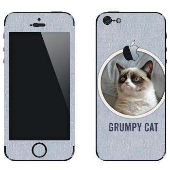 Виниловая наклейка «Сердитый кот фото» на телефон Apple iPhone 5