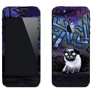 Виниловая наклейка «Упоротый мопс» на телефон Apple iPhone 5