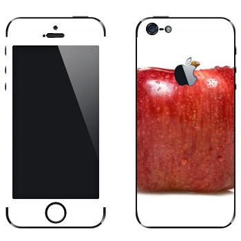 Виниловая наклейка «Квадратное яблоко» на телефон Apple iPhone 5