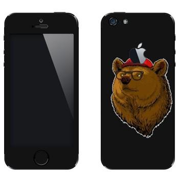 Виниловая наклейка «Медведь в кепке и очках» на телефон Apple iPhone 5