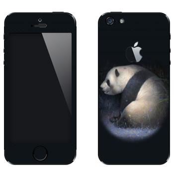 Виниловая наклейка «Панда» на телефон Apple iPhone 5