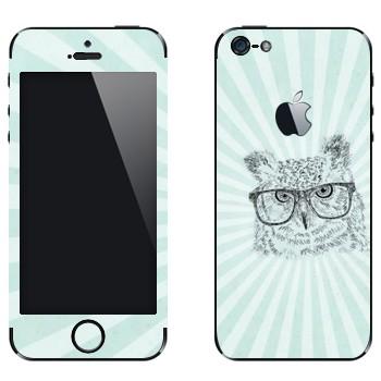 Виниловая наклейка «Сова в очках» на телефон Apple iPhone 5