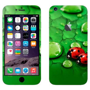 Виниловая наклейка «Божьи коровки на листьях» на телефон Apple iPhone 6 Plus/6S Plus