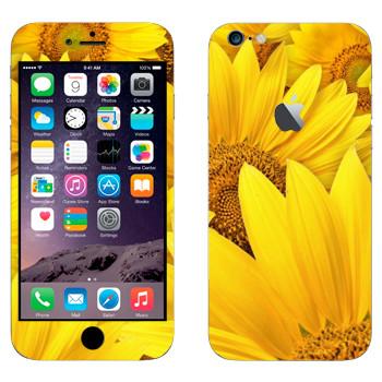 Виниловая наклейка «Желтые ромашки» на телефон Apple iPhone 6 Plus/6S Plus