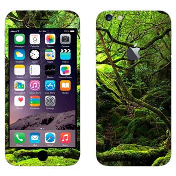 Виниловая наклейка «Лес во мху» на телефон Apple iPhone 6 Plus/6S Plus