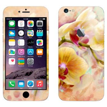 Виниловая наклейка «Орхидея» на телефон Apple iPhone 6 Plus/6S Plus