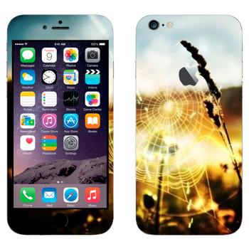 Виниловая наклейка «Паутина» на телефон Apple iPhone 6 Plus/6S Plus