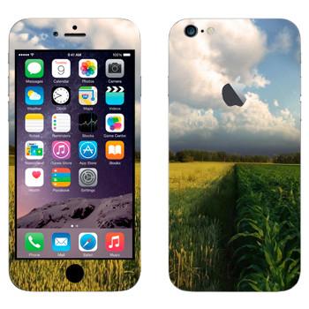 Виниловая наклейка «Поле кукурузы и небо» на телефон Apple iPhone 6 Plus/6S Plus