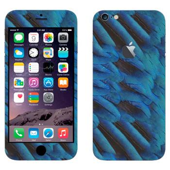 Виниловая наклейка «Голубые перья попугая» на телефон Apple iPhone 6 Plus/6S Plus
