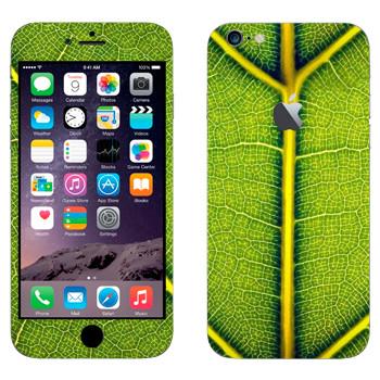 Виниловая наклейка «Зеленый лист» на телефон Apple iPhone 6 Plus/6S Plus