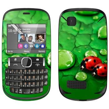 Виниловая наклейка «Божьи коровки на листьях» на телефон Nokia Asha 200