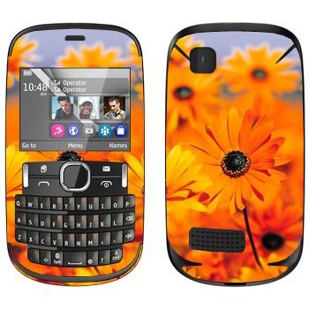 Виниловая наклейка «Оранжевые цветы Диморфотека» на телефон Nokia Asha 200