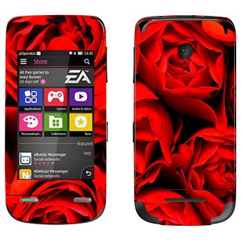 Виниловая наклейка «Много роз» на телефон Nokia Asha 311