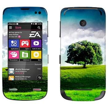 Виниловая наклейка «Одинокое дерево на лугу» на телефон Nokia Asha 311