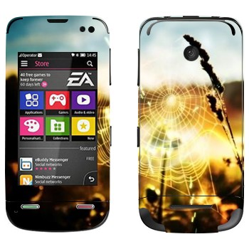 Виниловая наклейка «Паутина» на телефон Nokia Asha 311