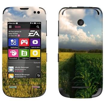 Виниловая наклейка «Поле кукурузы и небо» на телефон Nokia Asha 311