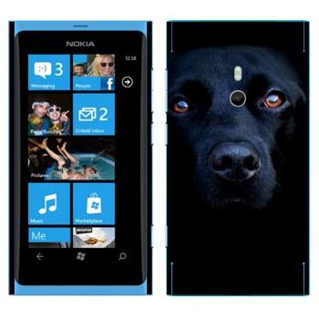 Виниловая наклейка «Черная собака» на телефон Nokia Lumia 800