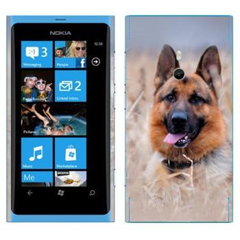 Виниловая наклейка «Овчарка на лугу» на телефон Nokia Lumia 800