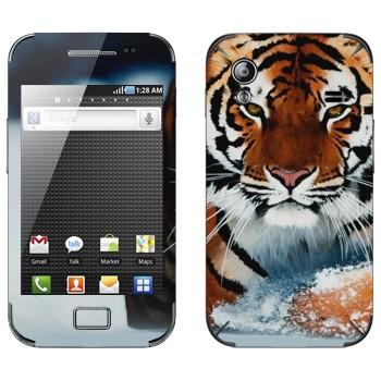 Виниловая наклейка «Амурский тигр» на телефон Samsung Galaxy Ace
