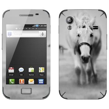 Виниловая наклейка «Белая лошадь в тумане» на телефон Samsung Galaxy Ace