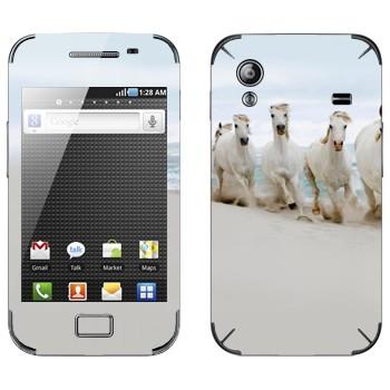 Виниловая наклейка «Белые лошади на пляже» на телефон Samsung Galaxy Ace