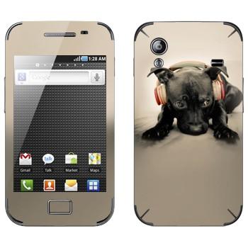 Виниловая наклейка «Черный щенок в наушниках» на телефон Samsung Galaxy Ace