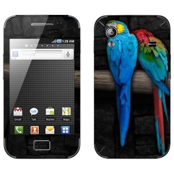 Виниловая наклейка «Два попугая Ара» на телефон Samsung Galaxy Ace