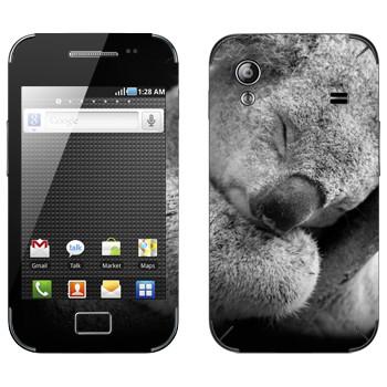 Виниловая наклейка «Коала спит» на телефон Samsung Galaxy Ace