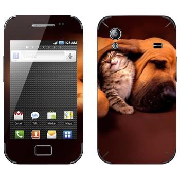 Виниловая наклейка «Котенок и собака» на телефон Samsung Galaxy Ace
