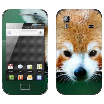 Виниловая наклейка «Красная панда» на телефон Samsung Galaxy Ace