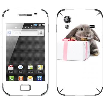 Виниловая наклейка «Кролик с подарком» на телефон Samsung Galaxy Ace