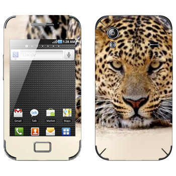 Виниловая наклейка «Леопард наблюдает» на телефон Samsung Galaxy Ace