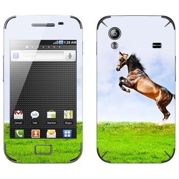 Виниловая наклейка «Лошадь на дыбах на лугу» на телефон Samsung Galaxy Ace