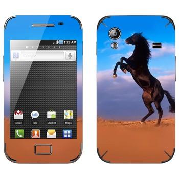 Виниловая наклейка «Лошадь на дыбах» на телефон Samsung Galaxy Ace